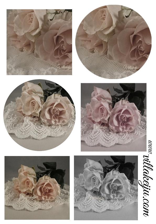 Korttikuva-arkki ruusut värillinen A4