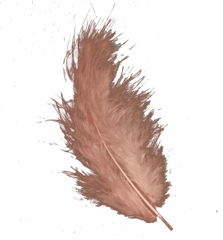 RAY untuvahöyhen 10-15cm (15kpl) rosa