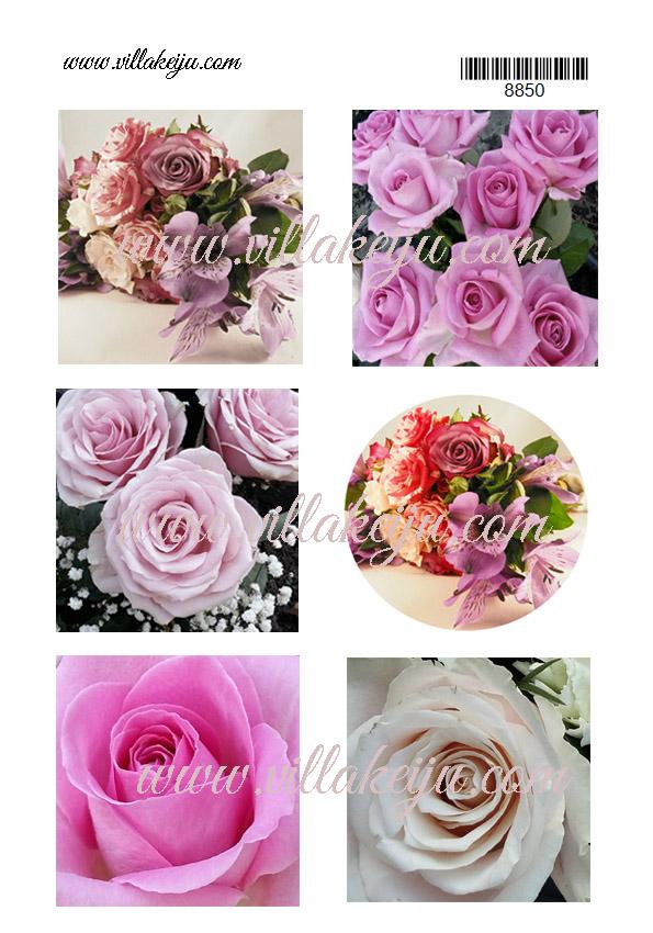 Korttikuva-arkki kukat  värikkäät A4