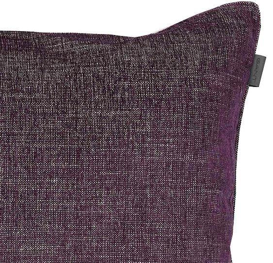 564 - purple beech