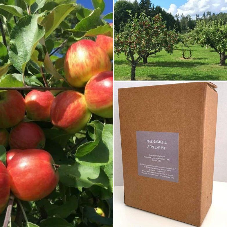 Ronkaisen Puutarhan omenamehu 3l