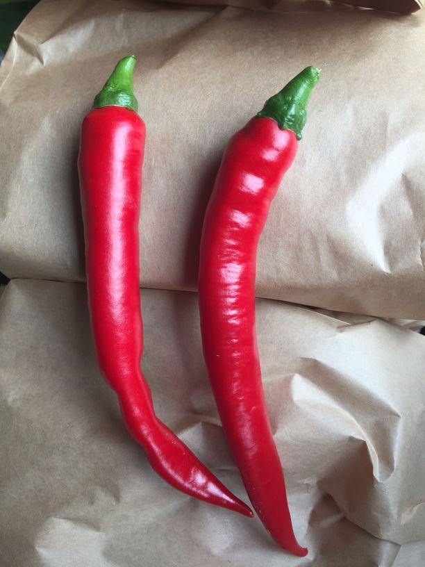 Kolin luomutilan chili 1kpl