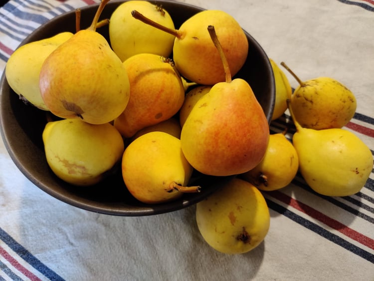 Ali-Marttilan Päärynä, luomu, 1kg