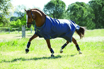 Horseware Amigo Hero 6 Lite 0 g